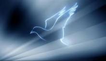 O Espírito Santo é o verdadeiro motor da evangelização